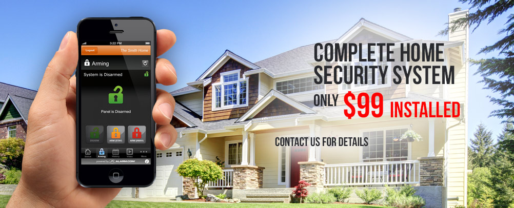 Park Security Systems