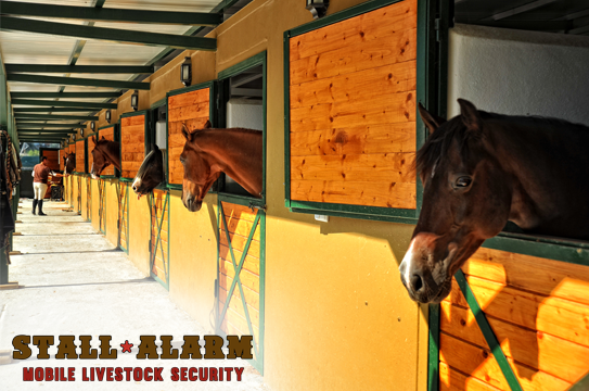 Security Safe | Commercial Security Livestock Stall Alarm