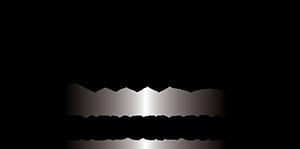 HiFi - Logo - McIntosh