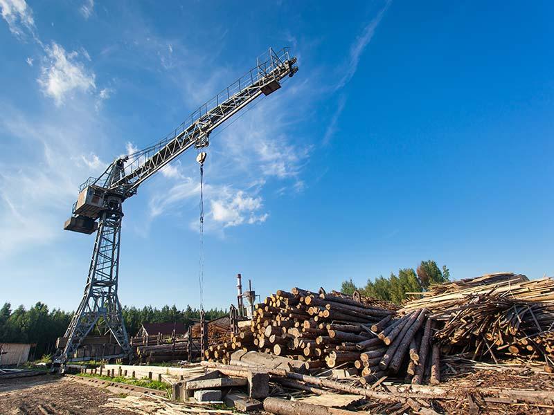 Markets - Logging - 1