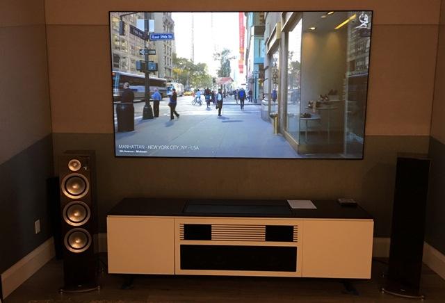 Sony Short Throw Projector, 110 inch ALR Screen, Paradigm Speakers