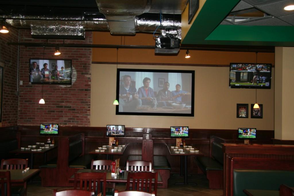 INI AV Gallery - Dulles Green Turtle Screen