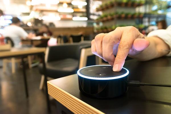Wire Monkeys Office Smart Speaker