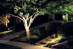 Products - Landscape Lighting - Image 3